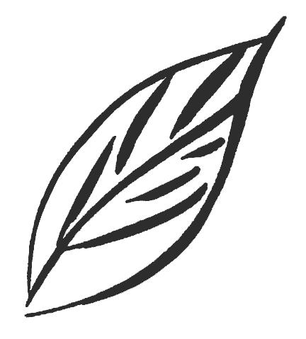 logo_susannestern