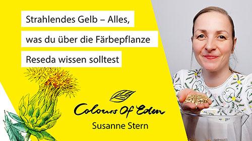 Susanne_Stern_Reseda_Wau
