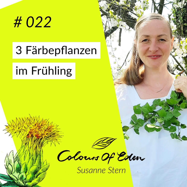 faerbende-Pflanzen-Fruehling-Susanne-Stern-Colours-of-eden